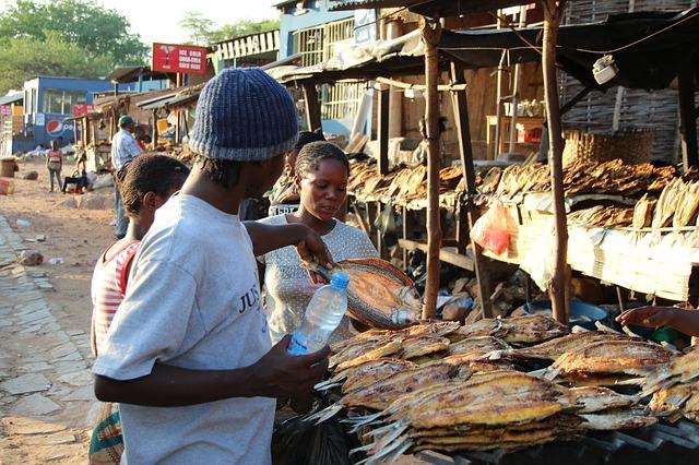 trh na suché ryby